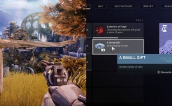 destiny-2-how-to-get-a-small-gift-and-every-cat-statue-to-use-them-at